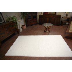 Carpet  - wall-to-wall SHAGGY CARNIVAL white