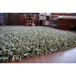 Carpet SHAGGY BRILLIANT 040 green