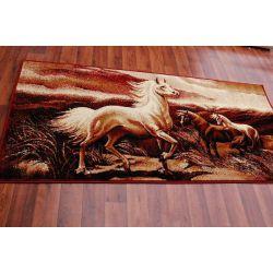 Carpet MAKATA - KONIE maroon
