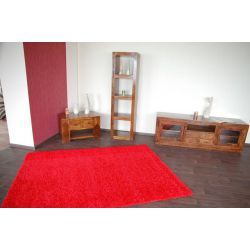 Carpet SHAGGY design 100 R