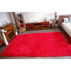 Carpet SHAGGY HOLLAND red