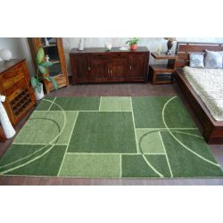Carpet SHAGGY ADVENTURE 4069 green