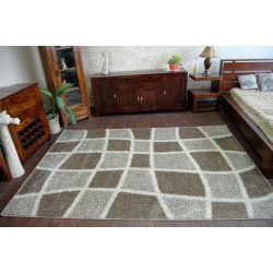 Carpet SHAGGY ALDO 530 beige/brown