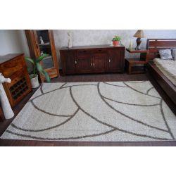Carpet SHAGGY ALDO 532 beige/brown