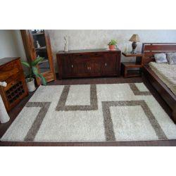 Carpet SHAGGY ALDO 4441 beige/brown