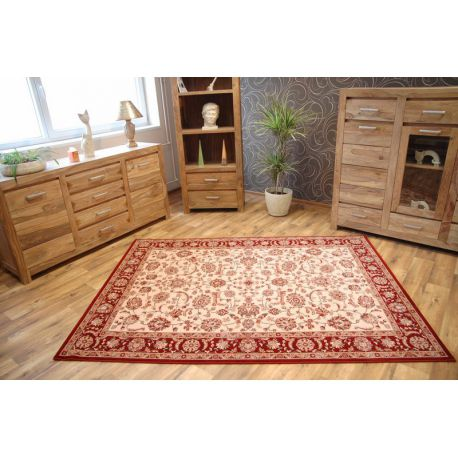 Carpet TERRY