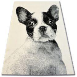 Carpet BCF FLASH 33327/160 - French Bulldog