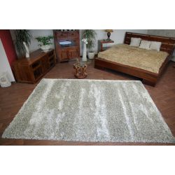 Carpet SHAGGY RUBBY design 66001/267