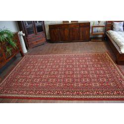 Carpet POLONIA ZAMKOWY ruby