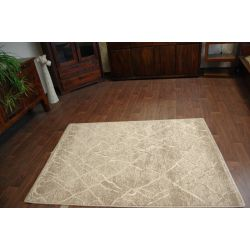 Carpet NATURAL EARTH dark beige