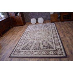 Carpet AMARENO VENUS brown