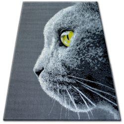 Carpet BCF FLASH 33323/170 - Cat