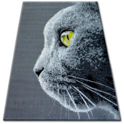 Carpet BCF FLASH 33323/170 - Cat